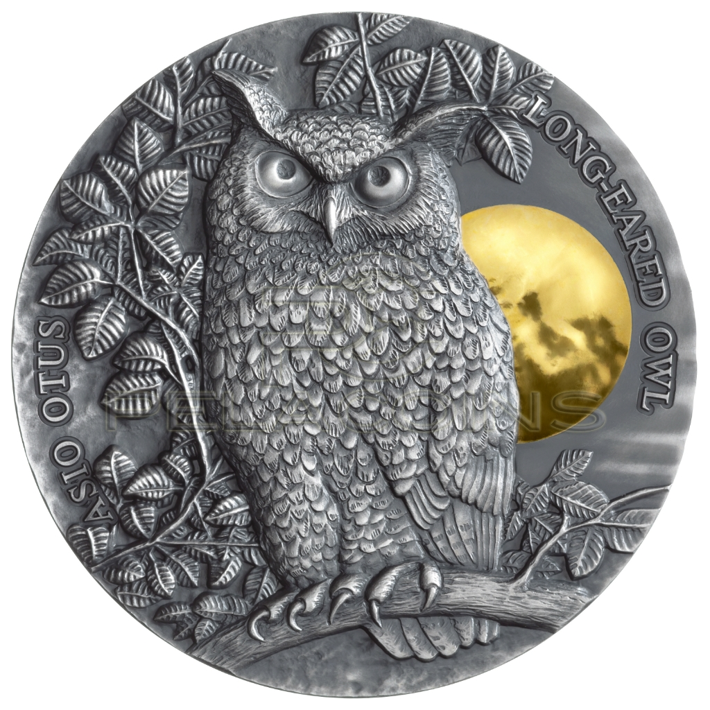 Niue Islands 2019 5$ Long-Eared Owl 2oz