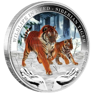 Tuvalu 2012 $1 Siberian Tiger Wildlife in Need