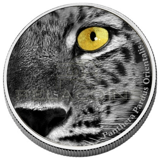 Congo 2013 2000 Francs Natures Eyes - Amur Leopard 2oz
