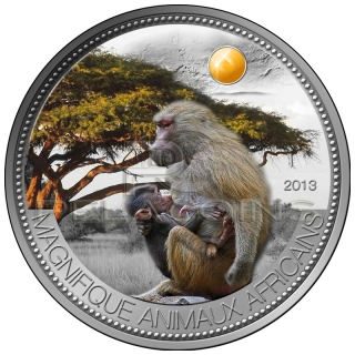 Niger 2013 1000 Fr Pavian Olive Baboon Beautiful African Wildlife Silver Coin