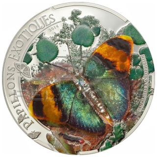 Central African Rebublic 2014 1000 Francs Papillons Exoqtiques Butterfly 3D - Euphaedra neophron