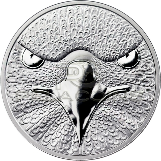 Sol Noctis 1 Bitcoin Cent 2014 - The Binary Eagle 1oz silver