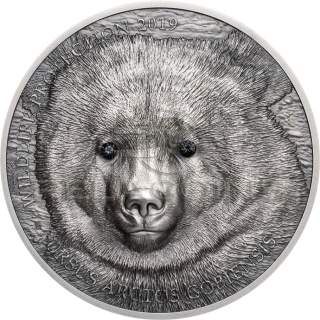 Mongolia 2019 500 Togrog MONGOLIAN GOBI BEAR Wildlife Protection 1oz